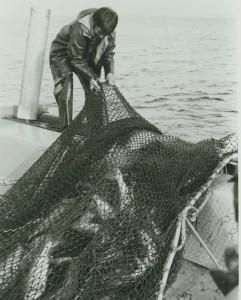 miscfisherman