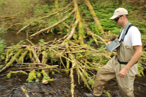Jed Moore, salmon biologist for the Nisqually Indian Tribe, uses a tablet computer to record steelhead spawning in the Nisqually watershed.