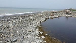 The mouth of Seibert Creek on Wednesday May 27, as discovered by a tribal staff member before the tribe reconnected the mouth to the Strait of Juan de Fuca.