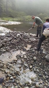 Jamestown S'Klallam tribal staff dig out a channel in a sandbar that is blocking the flow of Seibert Creek to the Strait of Juan de Fuca due to low water flow.