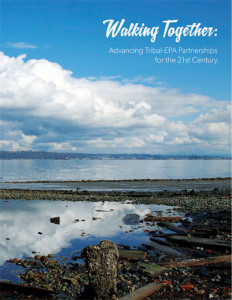 Beyond Gap (Walking Together) Report Cover